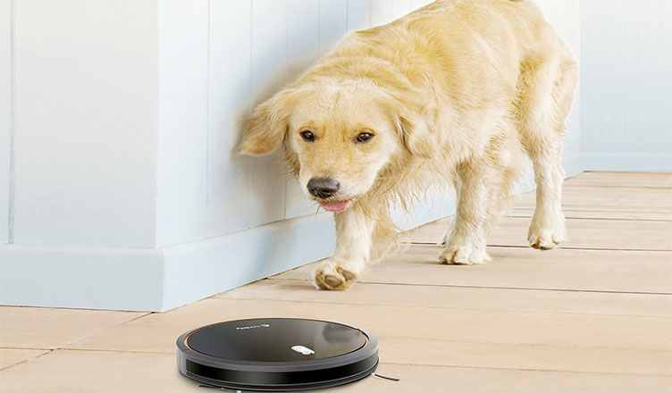 Best Robotic Vacuum Cleaners for Pet Hair